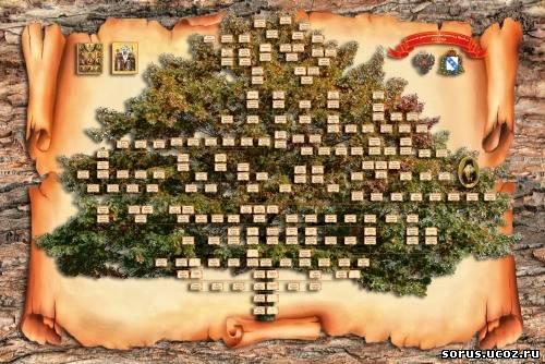 Родословное дерево картинки образец